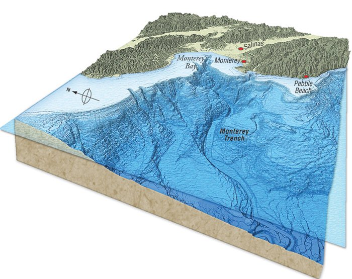 Monterey Trench map